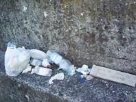L'angolo della vergogna: la spazzatura abbandonata nel campo (o nel parco)