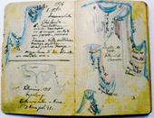 Scovato il diario di Luigin u sagrestan: una preziosa fonte che ci rivela come sono stati vissuti gli eventi storici di quel tempo e l'origine delle funzioni religiose tradizionali