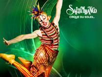 Un'esperienza imperdibile! Cirque du Soleil: Unica tappa in Italia dal 15 al 18 Marzo, Palalottomatica Roma