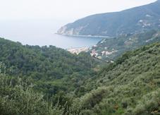 SPLENDIDI ANGOLI DI LIGURIA - Moneglia caput mundi: 22 itinerari tra profumi e panorami mediterranei