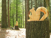 SPLENDIDI ANGOLI DI LIGURIA - Il bosco museo: pratiche innovative e recupero di conoscenze del passato per la riscoperta del legno come materiale ecologico, rinnovabile e fonte di eccellenza