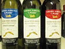 """VINI DI LIGURIA -  Azienda Agricola  """"i Pussi"""": a Ne, in Val Graveglia, una piccola grande realtà che produce vino e olio utilizzando metodi naturali nel rispetto dell'ambiente e di chi gusterà i suoi prodotti"""