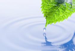 CASA E DINTORNI - Con il recupero dell'acqua piovana risparmi il 50-80% di quella potabile