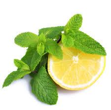 Ricette estive al profumo di menta, limone e the verde