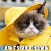 IL RIPASSINO - Ha piovuto o è piovuto?