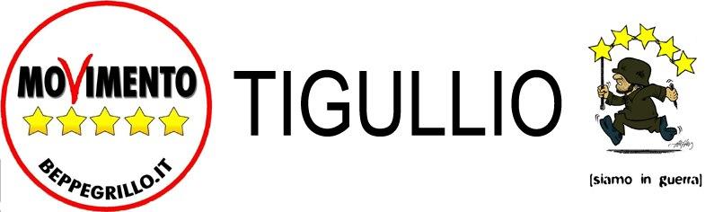 Domenica 22 Febbraio, Santa Margherita Ligure: gazebo del M5S con raccolta firme FUORI DALL'EURO e ACQUA PUBBLICA e raccolta proposte da inserire nel programma elettorale regionale