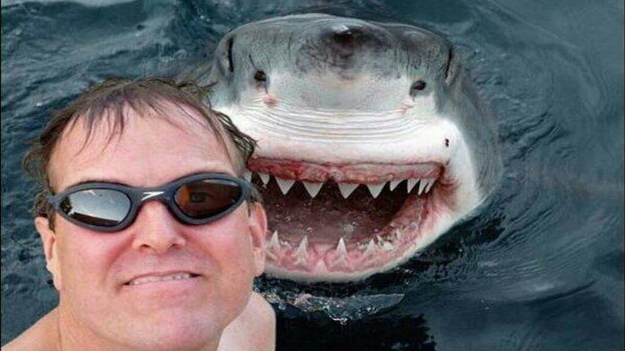 BUONMESE di Giansandro Rosasco - Morti di selfie