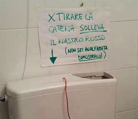 """Colpisce solo la Liguria ed è difficile da debellare: vi siete imbattuti anche voi nella """"sindrome della TAL""""?  Scopritelo qui"""