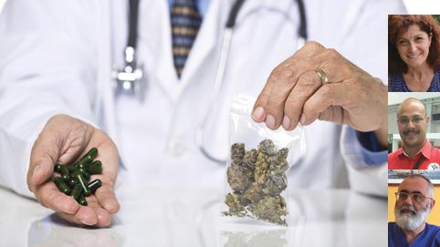 """Cannabis: in Liguria sì all'uso terapeutico - ASL 4: chi può usarla e come - Dott. Bertolotto: """"ottimi risultati nella terapia del dolore"""""""