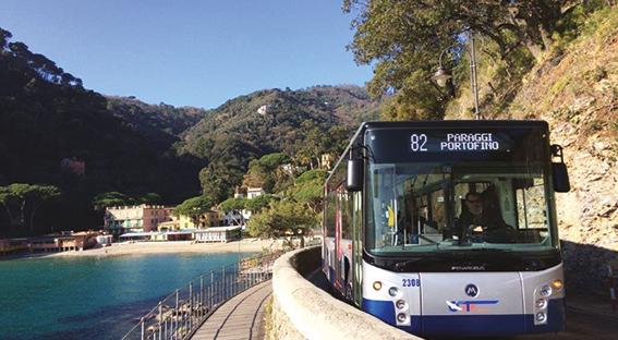 RIVOLUZIONE BUS: ADDIO STRESS DA TRAFFICO E DA PARCHEGGIO