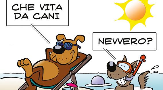Bau beach: ecco dove portare Fido a Recco, Chiavari, Sestri Levante, Santa Margherita e ora anche Lavagna